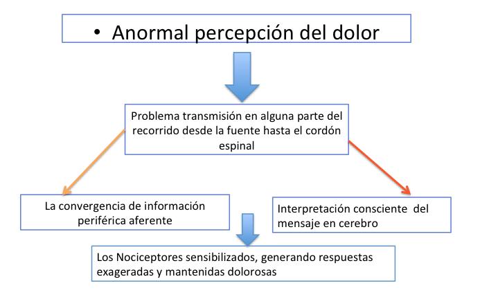 Liliana Rozo - Articulo -DolorLumbarOrigenArticular