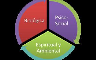 Juicio Critico Y Modelo Biosicosocial En La Terapia Manual Ortopedica