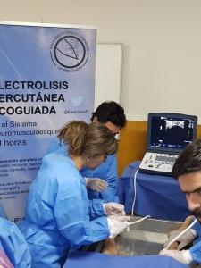 Curso Electrolisis Percutanea Ecoguiada, Santiago Diciembre 2018